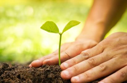 RSEDataNews : profesionnal information on sustainable development
